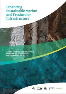 Green Finance Report